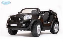 Электромобиль Mini Beachcomber, Чёрный, Глянцевый - фото 13066