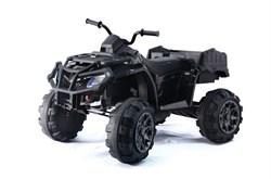 Электроквадроцикл BARTY Т009МР черный - фото 13828