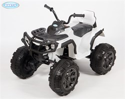 Электроквадроцикл BARTY Т001МР белый - фото 16843
