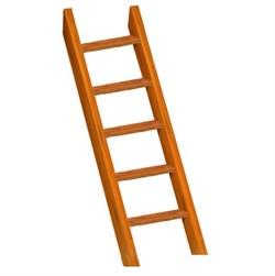 Лестница деревянная - фото 7816