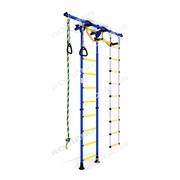 Детский спортивный комплекс (ДСК) Карусель R55 (ширина ступени 0,41 м)