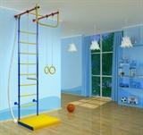 Детский спортивный комплекс Самсон 5